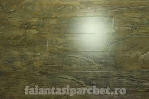 Poza 1 Parchet Laminat 12 mm COD 4004